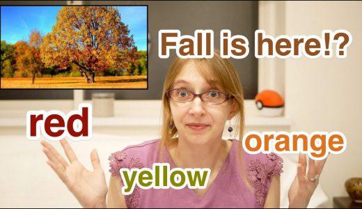 【会話表現/語彙】Fall Leaves|英語にない文化、どう言いますか?【YouTubeチャンネル】