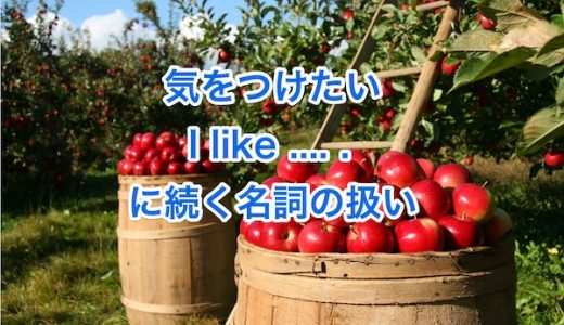 """""""I like~.""""の文の名詞は単数形?複数形?"""
